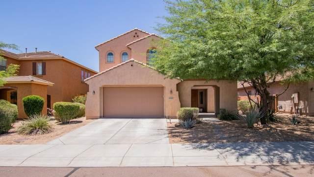 27564 N 90TH Lane, Peoria, AZ 85383 (MLS #6085980) :: Devor Real Estate Associates