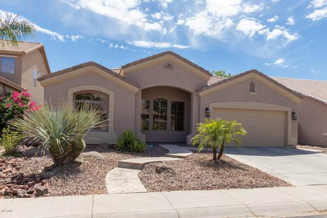 24413 N 59TH Avenue, Glendale, AZ 85310 (MLS #6086009) :: Devor Real Estate Associates