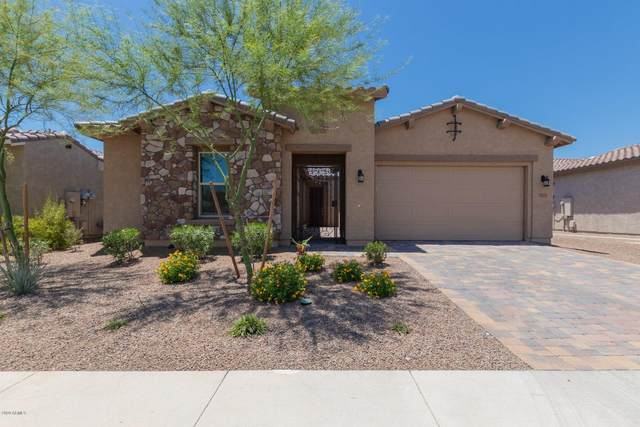 25954 N 103RD Drive, Peoria, AZ 85383 (MLS #6086030) :: The W Group