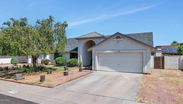 7396 W Colter Street, Glendale, AZ 85303 (MLS #6086049) :: Keller Williams Realty Phoenix