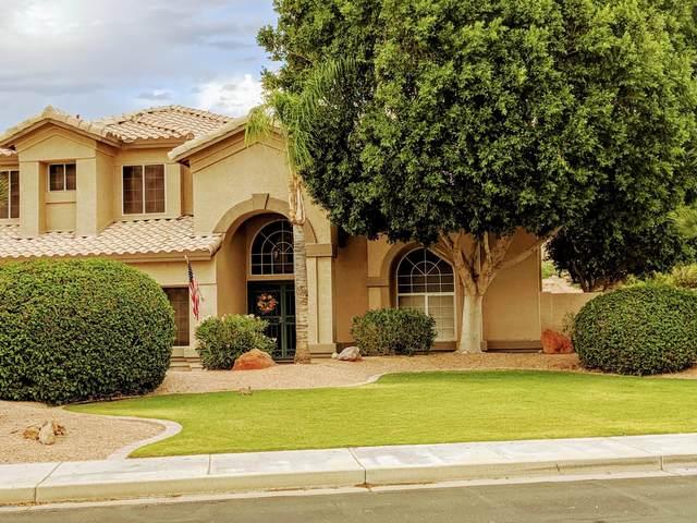 6420 W Louise Drive, Glendale, AZ 85310 (MLS #6086101) :: Dijkstra & Co.