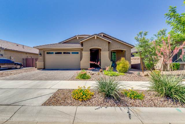 20344 E Reins Road, Queen Creek, AZ 85142 (MLS #6086114) :: Arizona 1 Real Estate Team