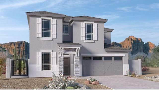 8757 S 165TH Avenue, Goodyear, AZ 85338 (MLS #6086120) :: Kepple Real Estate Group