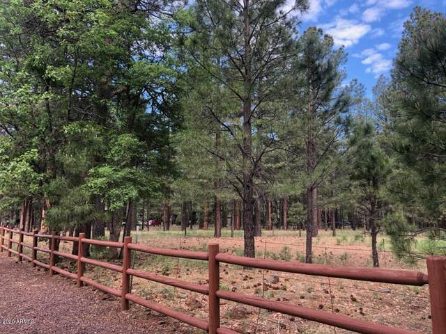 4660 Buck Springs Road, Pinetop, AZ 85935 (MLS #6086128) :: Kepple Real Estate Group