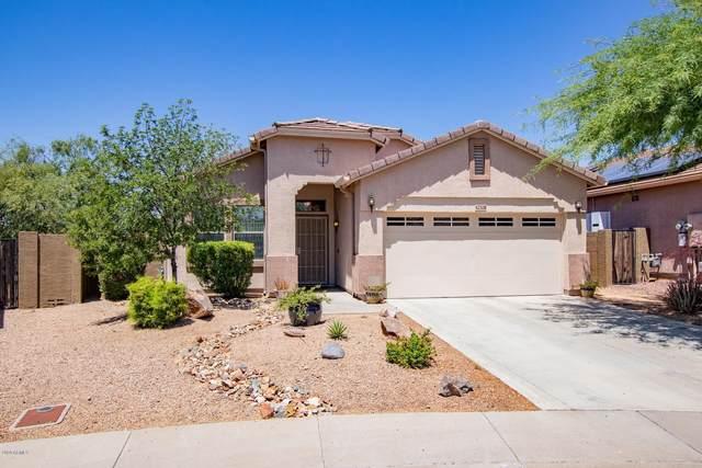 42328 N 46TH Lane, Phoenix, AZ 85086 (MLS #6086132) :: Lifestyle Partners Team