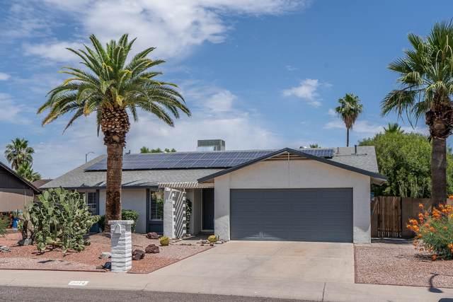 3414 E Dahlia Drive, Phoenix, AZ 85032 (MLS #6086135) :: Nate Martinez Team
