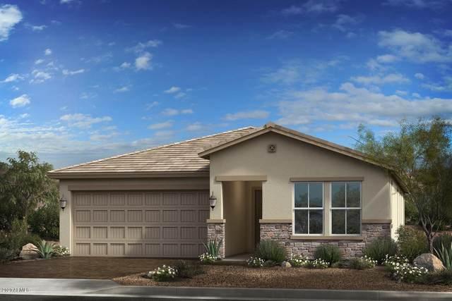 15432 W Edgemont Avenue, Goodyear, AZ 85395 (MLS #6086176) :: Kepple Real Estate Group