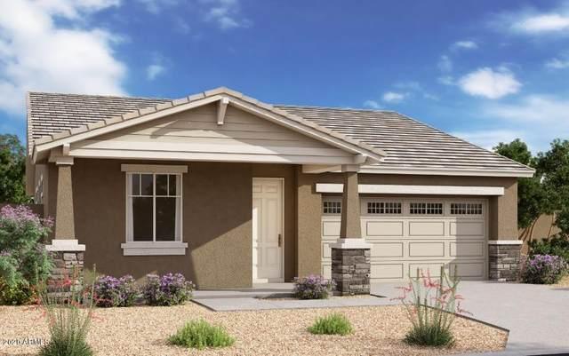 827 E Marblewood Way, Phoenix, AZ 85048 (MLS #6086206) :: Lifestyle Partners Team