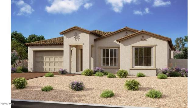 22645 E Camacho Road, Queen Creek, AZ 85142 (MLS #6086226) :: The Laughton Team
