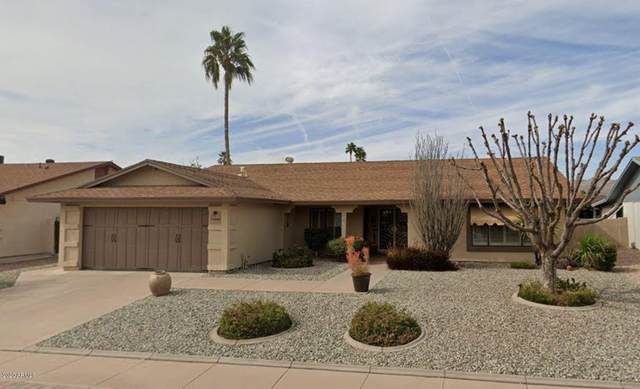12040 S Tomi Drive, Phoenix, AZ 85044 (MLS #6086265) :: Relevate | Phoenix