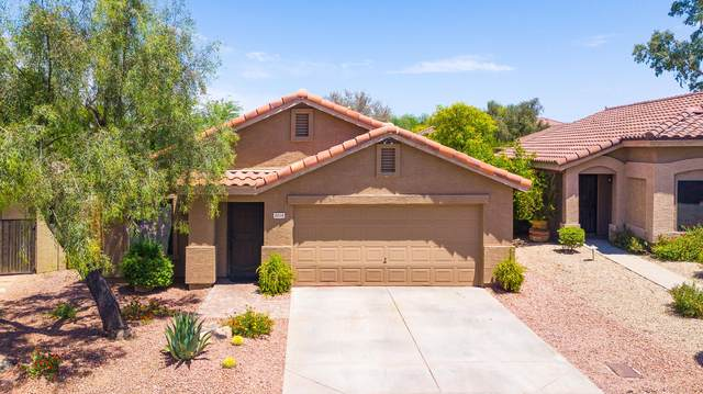 5016 E Dale Lane, Cave Creek, AZ 85331 (MLS #6086285) :: The Daniel Montez Real Estate Group