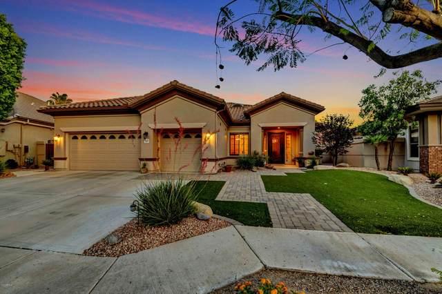 349 W Secretariat Drive, Tempe, AZ 85284 (#6086286) :: Long Realty Company