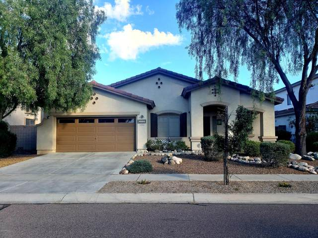 7305 N 87TH Drive, Glendale, AZ 85305 (MLS #6086307) :: The Property Partners at eXp Realty
