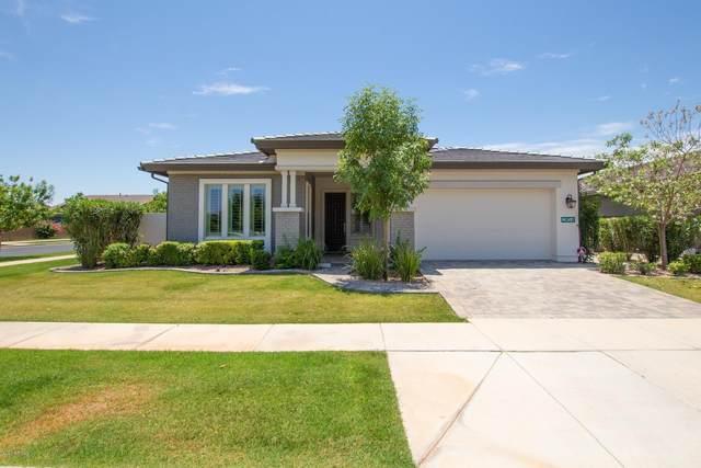 2859 E Arabian Drive, Gilbert, AZ 85296 (#6086309) :: Long Realty Company