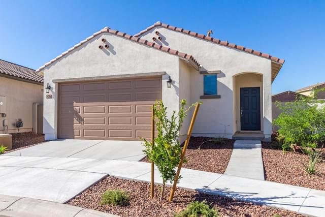 14346 W Pershing Street, Surprise, AZ 85379 (MLS #6086312) :: Revelation Real Estate