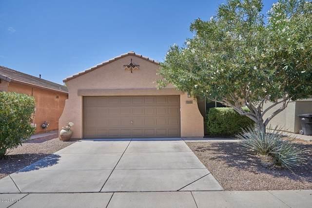 9121 E Auburn Street, Mesa, AZ 85207 (MLS #6086317) :: The Property Partners at eXp Realty