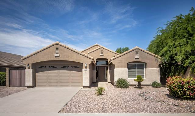3376 S Joshua Tree Lane, Gilbert, AZ 85297 (MLS #6086335) :: Long Realty West Valley