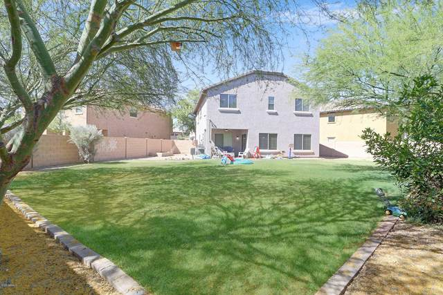 2512 W Lucia Drive, Phoenix, AZ 85085 (MLS #6086363) :: Kepple Real Estate Group