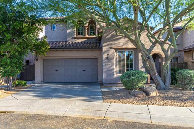 3839 E Matthew Drive, Phoenix, AZ 85050 (MLS #6086367) :: Conway Real Estate