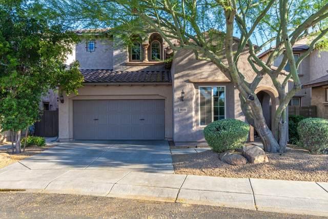 3839 E Matthew Drive, Phoenix, AZ 85050 (MLS #6086367) :: Lifestyle Partners Team