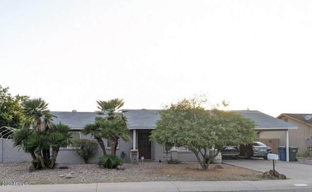 18640 N 12TH Avenue, Phoenix, AZ 85027 (MLS #6086379) :: Lifestyle Partners Team