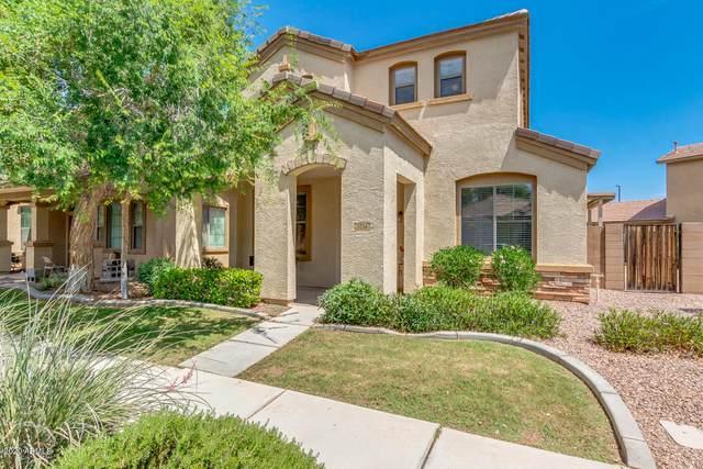 3754 E Larson Lane, Gilbert, AZ 85295 (MLS #6086384) :: Lifestyle Partners Team