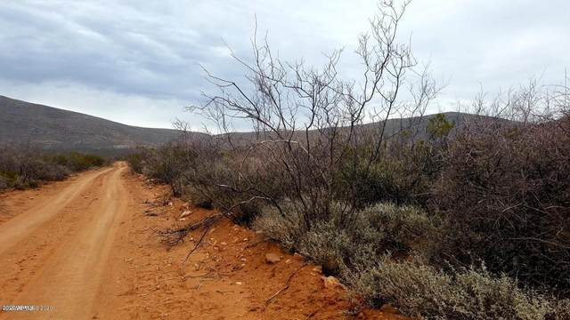 Lot 27 Desperado Drive, Tombstone, AZ 85638 (MLS #6086401) :: The W Group