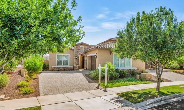 3517 N Carlton Street, Buckeye, AZ 85396 (MLS #6086428) :: Selling AZ Homes Team
