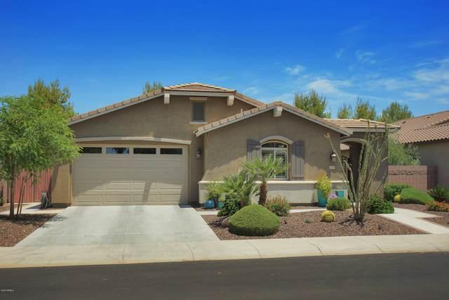 2470 E Blue Spruce Lane, Gilbert, AZ 85298 (MLS #6086458) :: Dijkstra & Co.