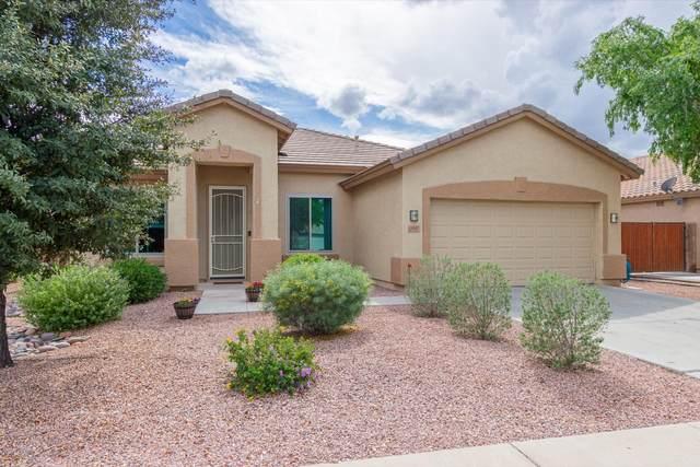 3047 E Kingbird Place, Chandler, AZ 85286 (MLS #6086468) :: Revelation Real Estate