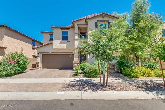 3078 E Ivanhoe Street, Gilbert, AZ 85295 (MLS #6086516) :: Dave Fernandez Team   HomeSmart