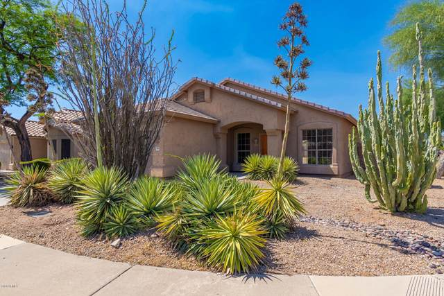 9708 E Ludlow Drive, Scottsdale, AZ 85260 (MLS #6086523) :: Openshaw Real Estate Group in partnership with The Jesse Herfel Real Estate Group