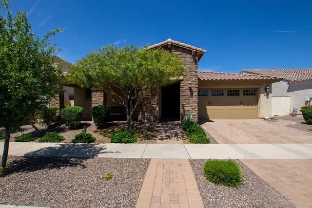 10730 E Vivid Avenue, Mesa, AZ 85212 (MLS #6086558) :: My Home Group