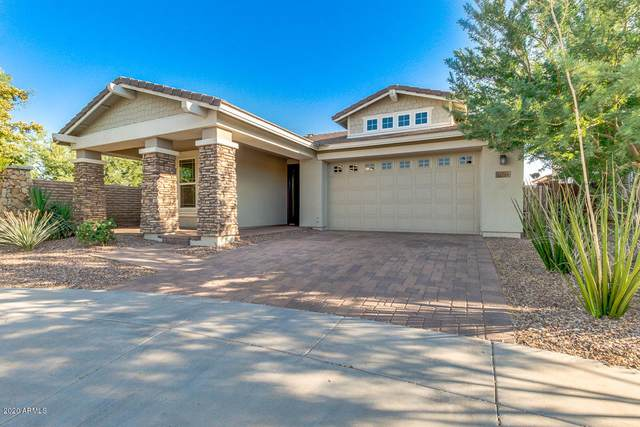 13203 W Copperleaf Lane, Peoria, AZ 85383 (MLS #6086581) :: Nate Martinez Team