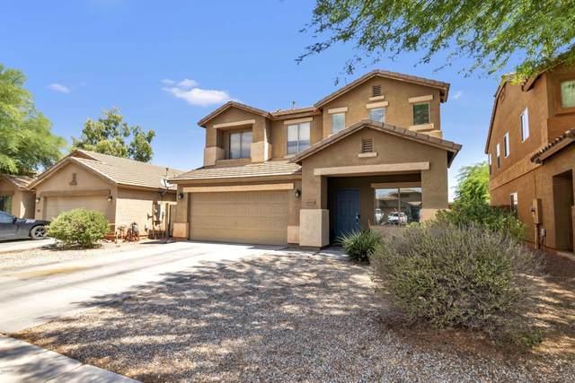 10684 E Verbina Lane, Florence, AZ 85132 (MLS #6086609) :: Service First Realty