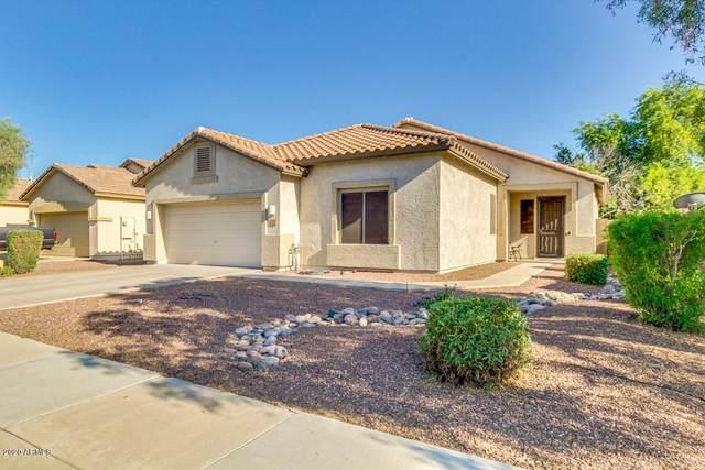 12517 W Apodaca Drive, Litchfield Park, AZ 85340 (MLS #6086624) :: Brett Tanner Home Selling Team