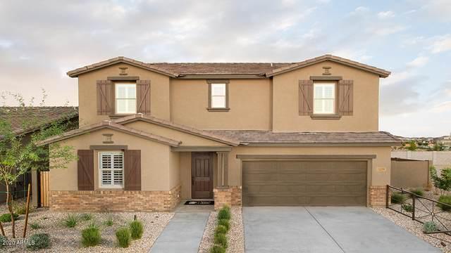 22591 S 225th Way, Queen Creek, AZ 85142 (MLS #6086663) :: My Home Group