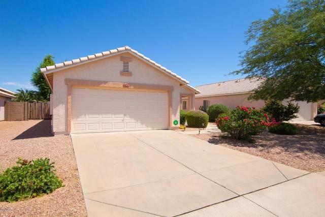 11452 E Cicero Street, Mesa, AZ 85207 (MLS #6086666) :: The Property Partners at eXp Realty