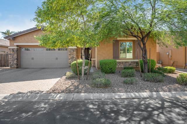 1654 N 144TH Drive, Goodyear, AZ 85395 (MLS #6086668) :: Selling AZ Homes Team