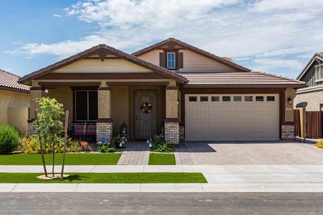 3943 E Ebano Street, Gilbert, AZ 85295 (MLS #6086676) :: Dave Fernandez Team   HomeSmart