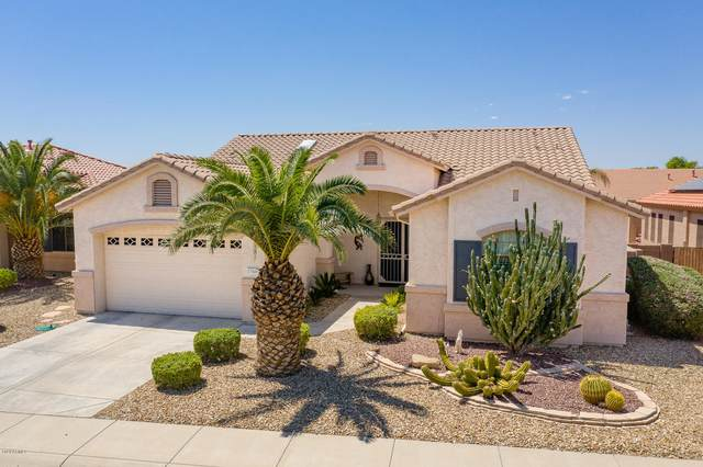 17949 W Camino Real Drive, Surprise, AZ 85374 (MLS #6086683) :: Klaus Team Real Estate Solutions
