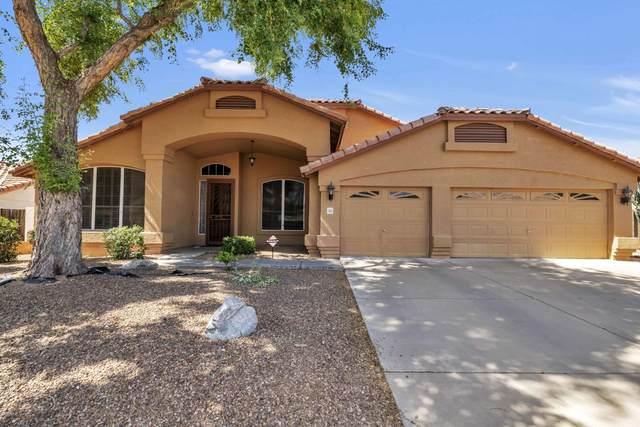 1315 W Lisa Lane, Tempe, AZ 85284 (MLS #6086704) :: Conway Real Estate