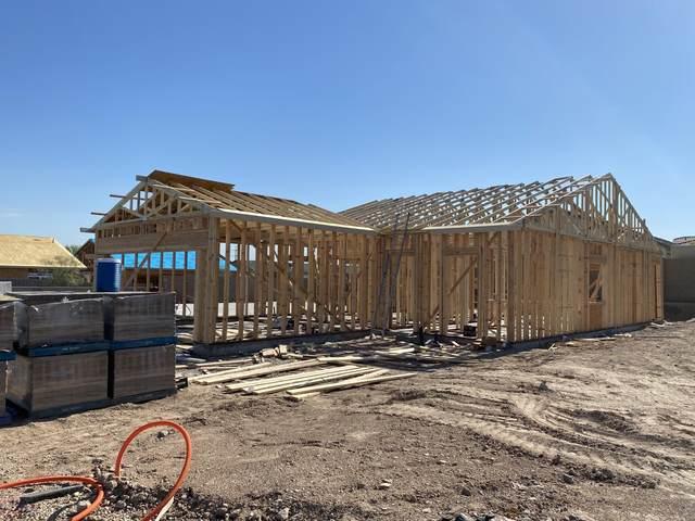 8009 S 6TH Drive, Phoenix, AZ 85041 (MLS #6086722) :: Revelation Real Estate