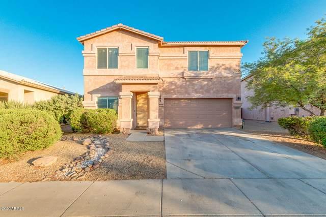 1237 E Blackfoot Daisy Drive, San Tan Valley, AZ 85143 (MLS #6086729) :: My Home Group