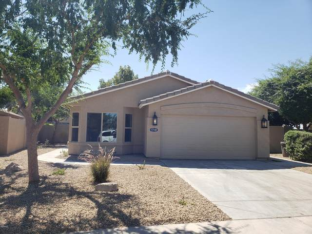 17181 N 52nd Avenue, Glendale, AZ 85306 (MLS #6086743) :: Nate Martinez Team