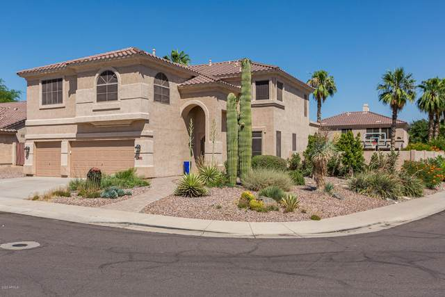16647 S 15TH Drive, Phoenix, AZ 85045 (MLS #6086799) :: Openshaw Real Estate Group in partnership with The Jesse Herfel Real Estate Group