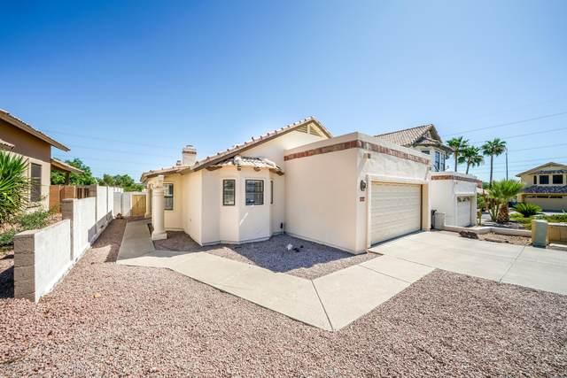 1514 E Renee Drive, Phoenix, AZ 85024 (MLS #6086823) :: Nate Martinez Team