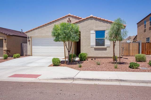 2054 N 213TH Drive, Buckeye, AZ 85396 (MLS #6086827) :: Conway Real Estate