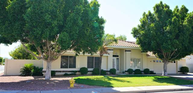 2463 N Los Alamos, Mesa, AZ 85213 (MLS #6086839) :: neXGen Real Estate
