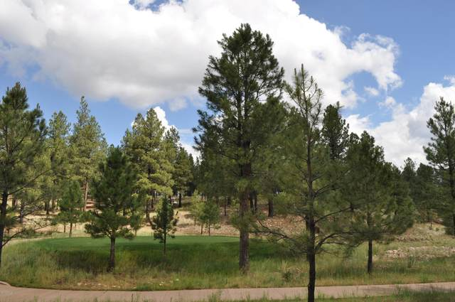 2260 E Del Rae Drive, Flagstaff, AZ 86005 (MLS #6086892) :: Power Realty Group Model Home Center